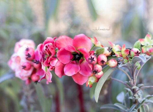 Florentine Haarband Blumen Oktoberfest Elfenkrone-02
